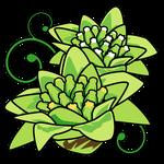 花フキノトウ(秋田県の花)