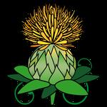 花ベニバナ(山形県の花)