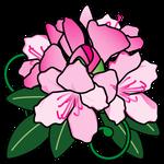 花石楠花(福島県の花)