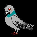 害獣イラスト鳩