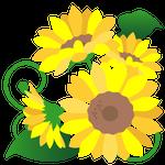 082花イラストひまわり(7月)