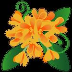 083花イラスト金木犀(8月)