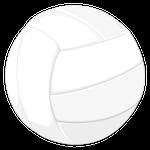 バレーボール球