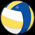 バレーボール球青黄