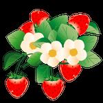 花イラストイチゴ