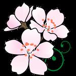 花ソメイヨシノ(東京都の花)