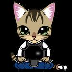 150剣道で正座するキジトラのネコ