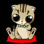 165可愛いマンチカンの福運招き猫