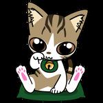 181可愛いシロタビの合格祈願招き猫